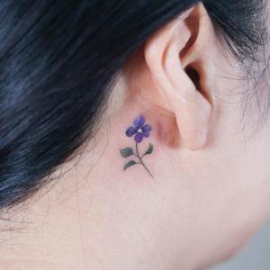 Pequeña Flor Violeta