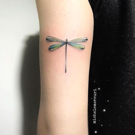 Libélula verde por Michele Mercuri