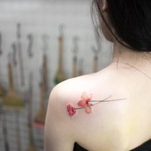 Flores claveles por Hongdam