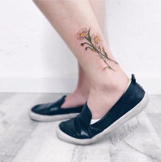 Flores margaritas por Luiza Oliveira
