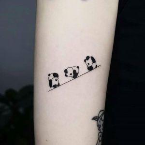 Ositos panda rodando