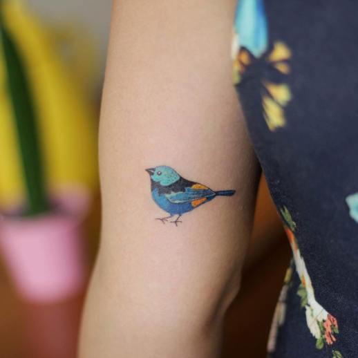 Ave azul por Luciana Periard, Art Efeito