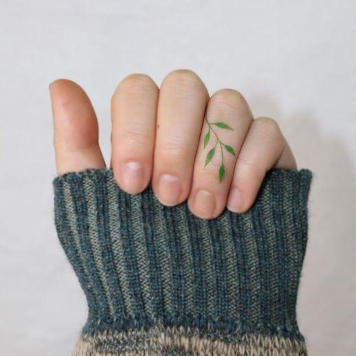 Enredadera con hojas verdes