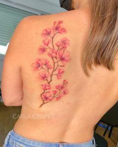 Flores de cerezo por Carla Crisper