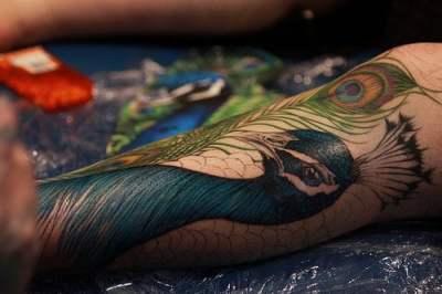 Tattoo de un pavoreal