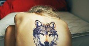 tatuaje lobo