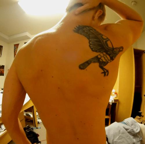 Tatuaje Pajaro En La Espalda