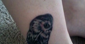 little owl tattoo
