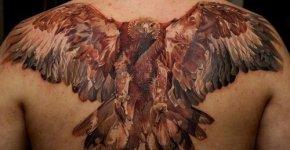 Eagle tattoo on the back