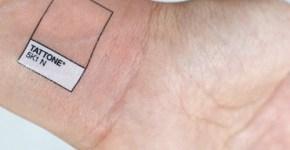 Tattoone (Photographer's tattoo)