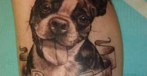 Tatuaje de un perro por Melissa Valiquette