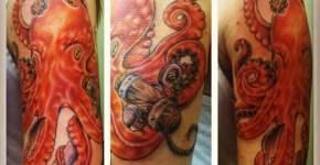 Tatuaje pulpo naranja en hombro