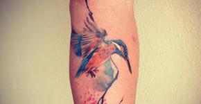 Tatuaje de un alcdein