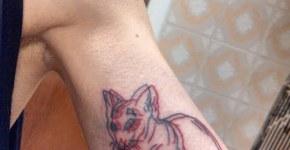 3D Cat tattoo