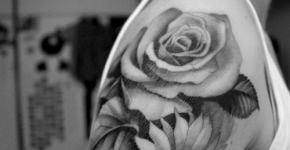 Tatuaje de una rosa y un girasol