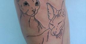 Par de gatos tatuados