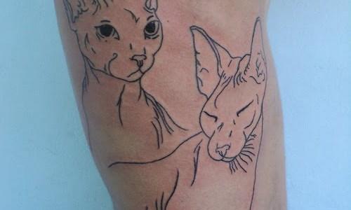 Tatuaje retrato de gatos en abdomen