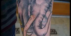 Tatuaje elefante en el brazo
