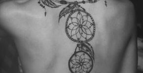 Tatuaje bello adorno en la espalda