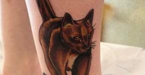 tatuaje-gato-en-el-pie