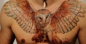 Tatuaje búho con las alas extendidas en el pecho