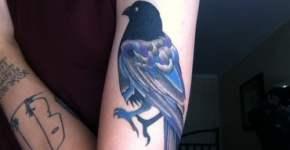 Tatuaje cuervo