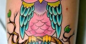 Tatuaje buho multicolor