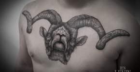 Tatuaje cabra montés