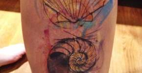 Tatuaje conchas marinas