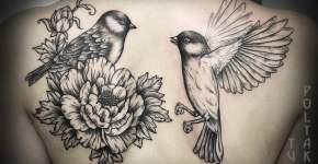 Tatuaje pájaros en la espalda