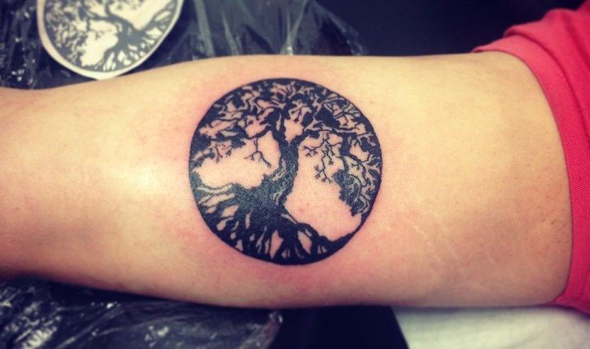Tatuajes De árboles De La Vida