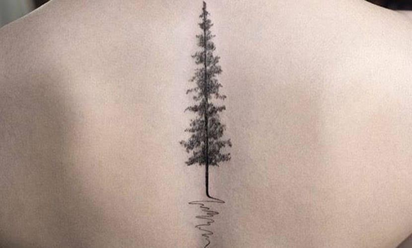 Tatuajes De Pinos Significado Y Recopilación De Diseños