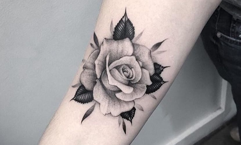 Tatuajes De Rosas Blancas Y Explicación De Su Significado