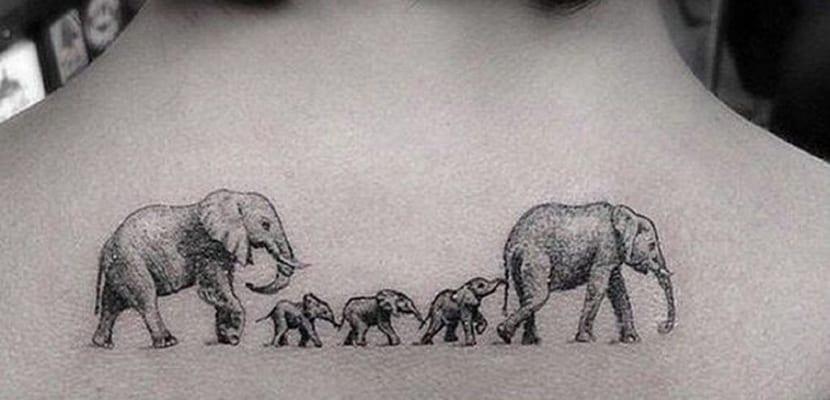 Inspiración En Tatuajes De Elefantes