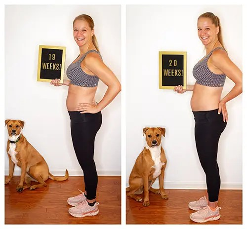Baby on the Run: Weeks 19 & 20