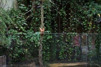 Exotarium Zoo Frankfurt/Main