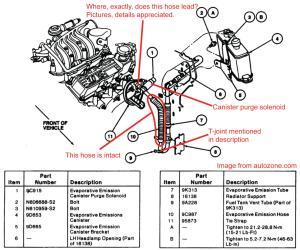 Fuel vapor return tube connection  '93 Taurus GL 30 L Gas  Taurus Car Club of America : Ford