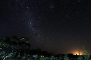 Milchstrasse über einem australischem Park