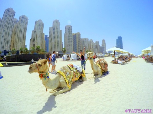 the beach jbr, kite beach, mydubai, dubaiblogger