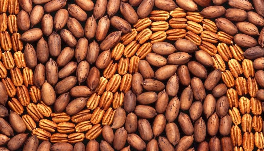 benefit of nuts, dubai blogger,