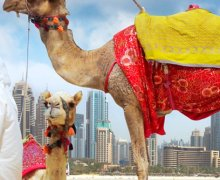 How to plan a long vacation trip to Dubai