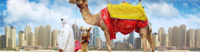 vacation trip to dubai, dubai visa, desert safari, visit dubai, things to do in dubai, dubai blogger, dubai influencer,