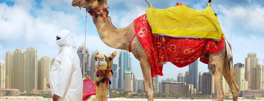dubai visa, desert safari, visit dubai, things to do in dubai, dubai blogger, dubai influencer,
