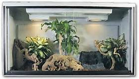 reptile cage lighting