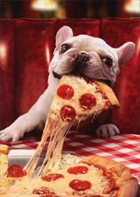 dog eating pizza, he'll need a vet appointment soon