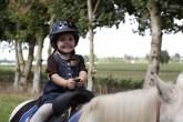 Pony (1)