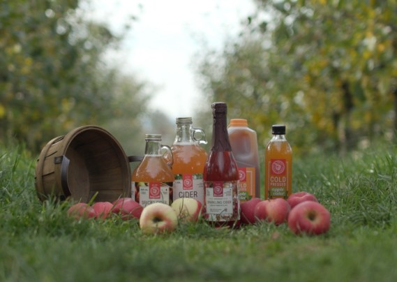 taves apple cider products