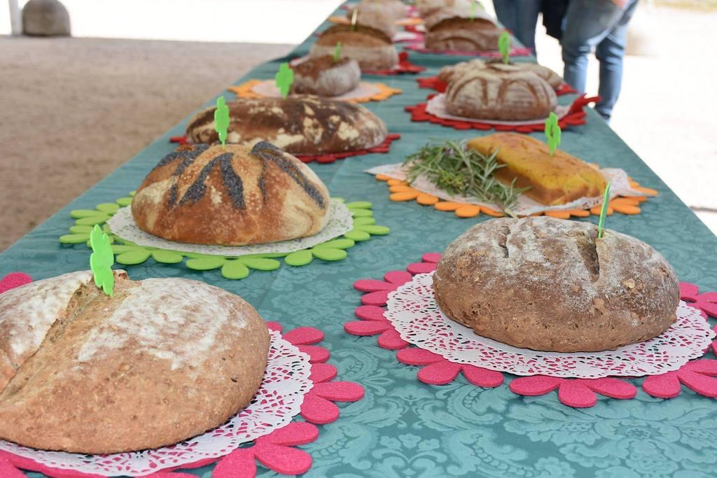 Pasta Madre Day - Concorso pane