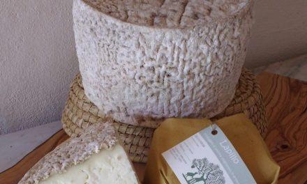 DOL e i suoi produttori: Lapillo, il pecorino affinato in grotta dell'azienda Il Circolo
