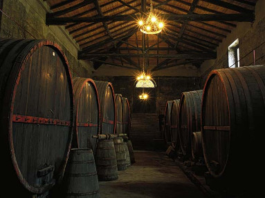 Escursione dal porto di Catania Etna e Wine tasting